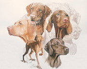 Vizsla Art - Hungarian Vizsla by Barbara Keith