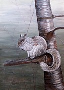 Judy Kirouac - Hungry Squirrel