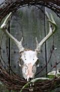 Diane Merkle - Hunters Wreath