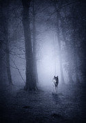 Surreal Art Photos - Hunting Wolf by Svetlana Sewell