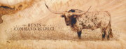Longhorn Pyrography Posters - Hunts Command Respect Poster by Jerrywayne Anderson