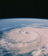 Elena Art - Hurricane Elena by NASA / Science Source
