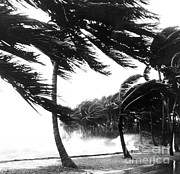 Heavy Weather Prints - Hurricane Waves Strike Seawall Print by Science Source