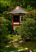 Forest Photographs Prints - Hut in Japanese Garden Print by Tam Graff