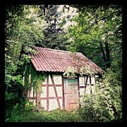 Trees Art - Hut in the forest by Matthias Hauser