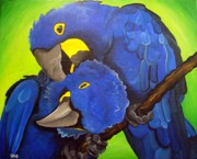Parrot Print Paintings - Hyacinth Macaw by Una  Miller