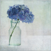 Glass Bottle Posters - Hydrangea Poster by Jill Ferry