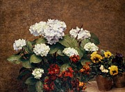 Marigold Framed Prints - Hydrangeas and Wallflowers and Two Pots of Pansies Framed Print by Henri Jean Fantin-Latour