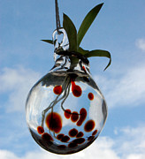 Hand Blown Glass Art Originals - Hydro-Glass small red by Jessica Schimpf