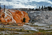 Hymen Terrace At Mammoth Hot Springs - Yellowstone National Park Wy Print by Christine Till