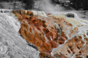 Weird Metal Prints - Hymen Terrace Mammoth Hot Springs Yellowstone Park WY Metal Print by Christine Till