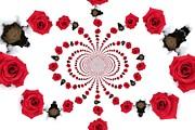 Hypnotic Roses Print by Denise Oldridge