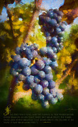 Vine Grapes Posters - I am the Vine Poster by Dale Jackson