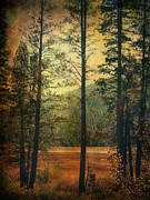 Pine Trees Prints - I Dont Know What to Believe In Print by Laurie Search