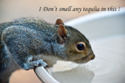 Inquisitive Prints - I Dont Smell Any Tequila in This Print by Douglas Barnett