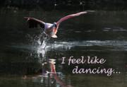 I Feel Like Dancing Print by Karol  Livote