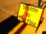 Bus Photo Originals - I Got Enough Fleas Already by Chuck Taylor