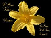 Garden - I Have Fallen ....Yellow Lilly by Dawn Hay