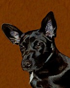 Buy Dog Prints Drawings - I Hear Ya - Dog Painting by Patricia Barmatz