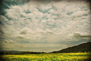 Pleasanton Photos - I Just Sat There Watching The Clouds by Laurie Search