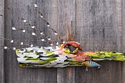 Birds Sculpture Prints - I Love Fish Print by Krista Ouellette