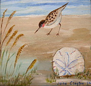 Sandpiper Painting Framed Prints - I love the Sea Framed Print by Jane Williams Clayton