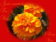 Garden - I LOVE YOU in Red and Orange by Dawn Hay