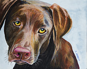 Labrador Retriever Paintings - I Really Rather Be Playing by Roger Wedegis