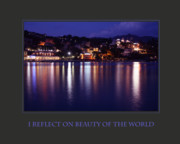 Self Help Posters - I Reflect On Beauty Of The World Poster by Donna Corless