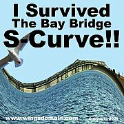 Wing Tong Mixed Media Posters - I Survived the Bay Bridge S.Curve Poster by Wingsdomain Art and Photography