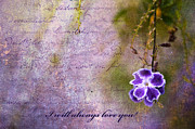 Purple Flower Flower Image Photos - I will always love you by Bonnie Barry