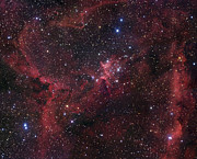 Starfield Framed Prints - Ic 1805 In Cassiopeia Framed Print by Robert Gendler
