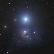 Deep Reflection Posters - Ic 348, Bluish Reflection Nebula Poster by Don Goldman