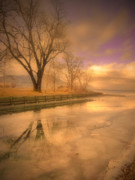 Tree Reflections Prints - Ice and Light Print by Tara Turner
