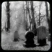 Gothic Graveyard Prints - Ice Cold Print by Gothicolors And Crows