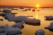 Ice Floes Art - Ice Floes And Sunset, Hudson Bay by Mike Grandmailson