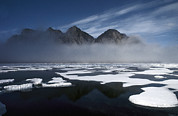 Animalsandearth Photos - Ice Floes In Pond Inlet, Northeast by Flip Nicklin