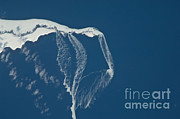 Ice-floe Posters - Ice Floes Off The Northeastern Tip Poster by NASA/Science Source