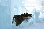 Ice Hotel Metal Prints - Ice Hotel chic Metal Print by Sophie Vigneault
