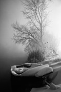 Winter Tree Prints - Ice pier Print by Davorin Mance