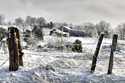 Rural Indiana Digital Art Prints - Ice Storm - D004825a Print by Daniel Dempster