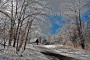 Holiday Cards Photos - Ice Storm Christmas Card by Lois Bryan