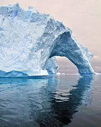 Pole Prints - Iceberg Alley Print by Tony Beck