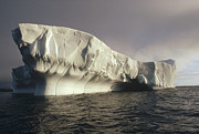 Mar2713 Art - Iceberg Antarctica by Flip Nicklin
