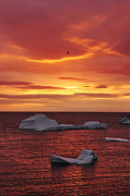 Icebergs Art - Icebergs at Sunset by Christian Heeb