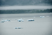 Foggy Day Prints - Icebergs Floating In The Sea Print by James Forte