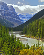 Scenic Route Framed Prints - Icefields Parkway Framed Print by Tony Beck