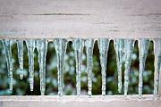 Snow Prints - Icicles Print by David Patterson