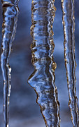 Icicles Photos - Icicles by Heiko Koehrer-Wagner