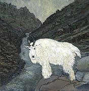 Mountain Goat Painting Prints - Idaho Mountain Goat Print by Sara Stevenson